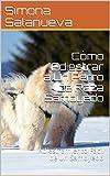 Cómo Adiestrar a Un Perro de Raza Samoyedo : Adiestramiento Fácil de un Samoyedo