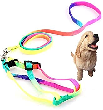 GZGZADMC Harnais classique pour chien avec laisse en nylon, réglable en nylon arc-en-ciel pour chien, lapin, chat, laisse pour chien et chat
