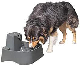PetSafe Drinkwell 2 Gallon Dog and Cat Water Fountain, Best for Large Dog Breeds and Multiple Pet Households, Easy-to-Clean Design, Filters Included, Grey