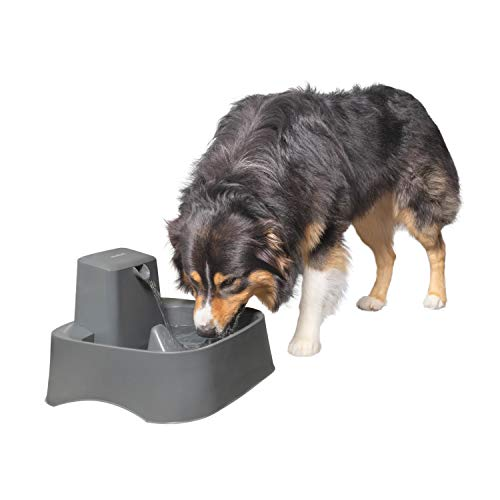PetSafe Drinkwell 2 Gallon Dog Water Fountain - Best for Large Dog Breeds and Multiple Pet Households - Easy-to-Clean Pet Water Dispenser - Filters Included - Grey