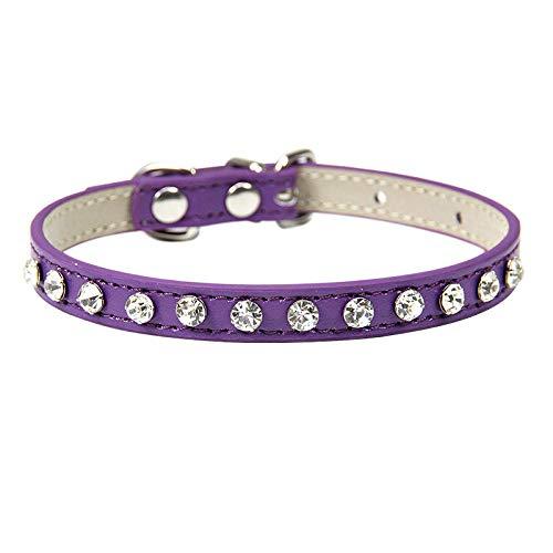 ZYYC Rivetti di Strass di Lusso Collare di Gatto Collari per Cani di Piccola Taglia Cinturino da Collo per Cuccioli Accessori per Gattini Collare di Gatto Viola all'Ingrosso_XS