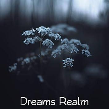 Dreams Realm