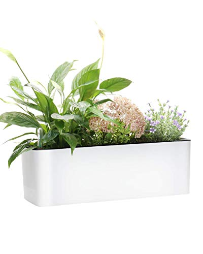Elongated Self Watering Planter Pots Window Box 5.5 x 16 inch with Coconut Coir Soil Indoor Home...