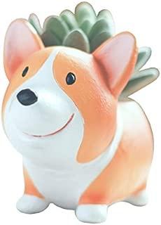 Youfui Cute Dog Flowerpot Resin Succulent Planter Desk Mini Ornament (Crogi A)