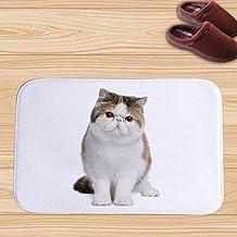 Animal Pattern Bathroom Flannel Mat Slip Water Absorption Door Rug Bath Mat Washable Soft mat (Color : Three)