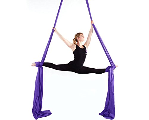 F.Life Aerial Silks Standard Kit Pilates Yoga Flying Swing Aerial Yoga Hammock Silk Fabric for Yoga (10 Yards of Fabric)(Dark Purple)