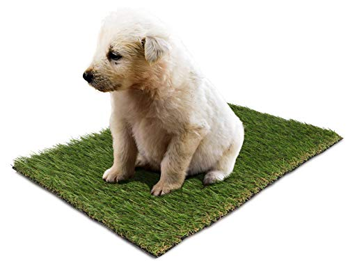 Primaflor - Ideen in Textil Premium Ersatz-Rasen Kunstrasen für Hundetoilette - 50 x 63 cm, Rasenmatte, Ersatzgras, Trainingsunterlage für Hundeklo, Welpentoilette
