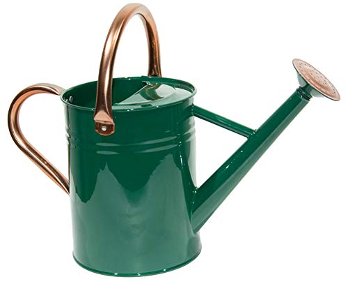 yourjoy Steel Watering Can Sliver Galvanized Steel Watering Can with Copper Accents,Removable Rosette-Diffuser,One-Gallon