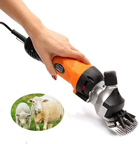 LXDDP Juego Cabras eléctricas para esquilar ovejas, 500 W, 6 velocidades, 13 Dientes, 2400r para Cabras Granja, Alpaca, Llamas, Conejos Angora, Camellos, Caballos, cortaúñas para Mascotas
