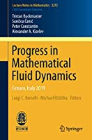 Progress in Mathematical Fluid Dynamics: Cetraro, Italy 2019 (Lecture Notes in Mathematics)