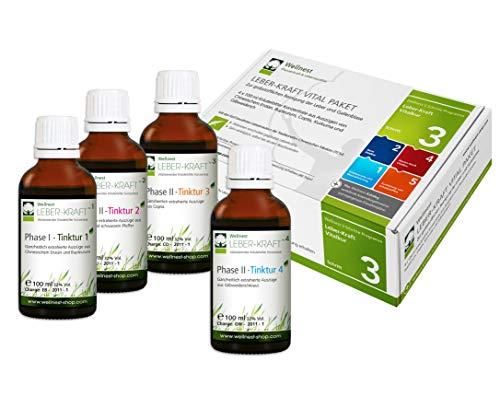 Wellnest Leber-Kraft Detox-Kur-Paket (Entgiftungs-Kurpaket für 40 Tage Leberreinigung nach TCM) - 100% pflanzlich - einfache Handhabung - sehr gut wirksam bei Leber- und Durchschlafbeschwerden