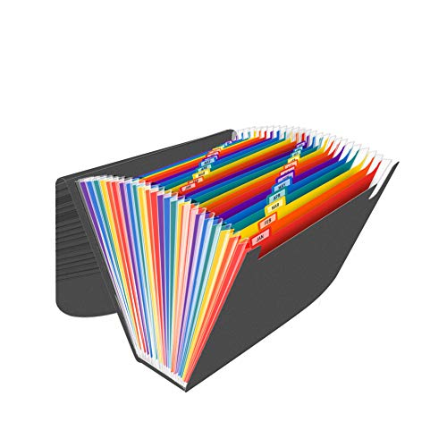 Cartella Portadocumenti A4 di 24 Tasche, Fisarmonica di Porta Documenti, Raccoglitore Documenti Organizer per Ufficio Archivio/Scrivania