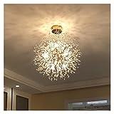 WWWL Lámpara de Techo Diente de león LED Lámpara de araña para salón Comedor Cocina Dormitorio Decoración Moderna Lustre Pendiente Interior Luz de Techo