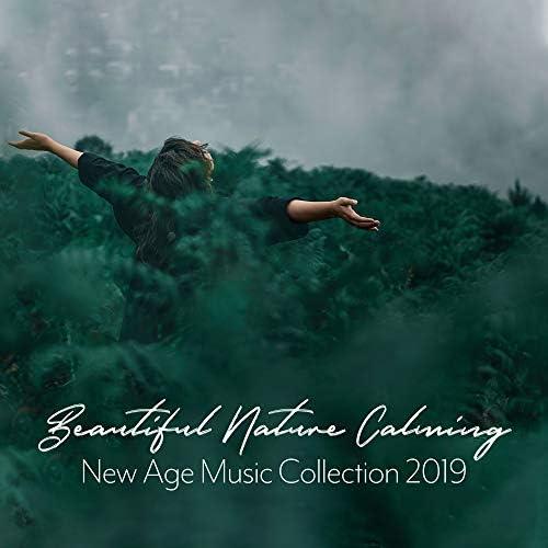 Calming Sounds & Life Sounds Nature