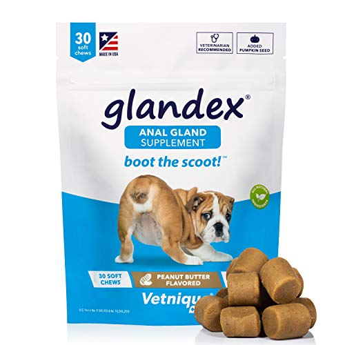 Glandex Anal Gland Soft Chew Treats with Pumpkin for Dogs 30ct Chews with Digestive Enzymes, Probiotics Fiber Supplement for Dogs – Vet Recommended - Boot The Scoot (Peanut Butter) - by Vetnique Labs
