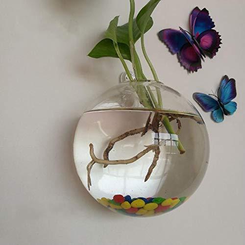 GoodFaith Poisson Bol, Transparente à Suspendre Décoration Pot de Fleurs Transparent sphérique Poisson Bol à Fixation Murale Clair Fish Tank