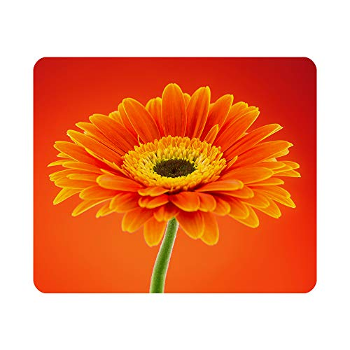 Nicokee Gaming Mouse Pad Orange Gerbera Daisy Flower on Background Non-Slip Rubber Mouse Pad for Computers, Laptop, Office, Home Rectangle Personalized Mousepad 9.5 Inch x 7.9 Inch