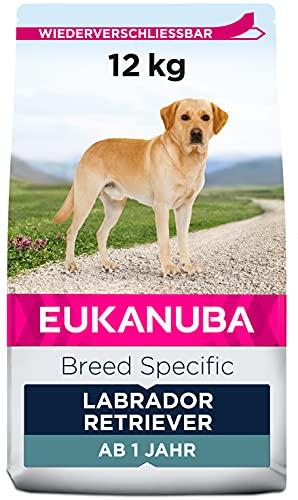 Eukanuba Breed Specific Labrador Retriever Trockenfutter - optimal auf die Rasse abgestimmtes Premium Hundefutter mit Huhn, 12 kg