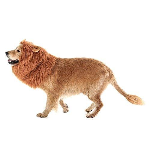 WSGQLT Costume de crinière de lion pour chien de grande taille. Complémentaire crinière de lion pour costume de chien-Lion Halloween Costume de crinière de chien pour animal de compagnie
