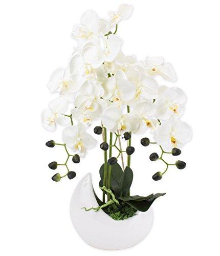 Gesteck künstliche Orchideen im Keramik Übertopf - Gesamthöhe: ca. 65cm | Stoffblüten | Farbe: Weiß Ecru | Gesteck Orchidee Kunstpflanze Schmuck Blumen Arrangement Kunstblumen Fensterschmuck