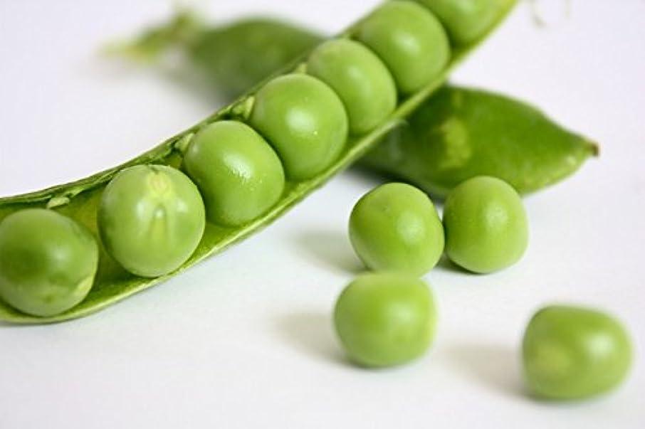 Bio - Sugar snap pea - certified organic seeds
