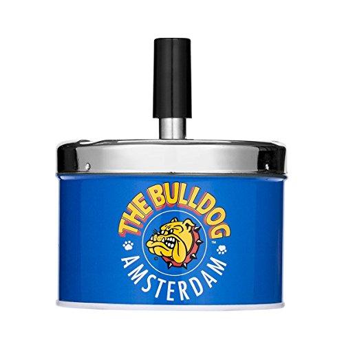 The Bulldog Bulldog Blau Bild