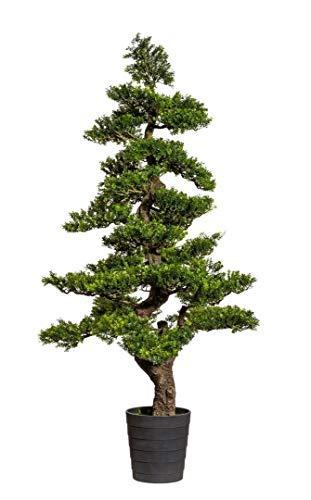 Seidenblumen Roß Bonsai Teeblatt 150x70cm GA künstlicher Baum Kunstbaum Kunstpflanzen Dekobaum