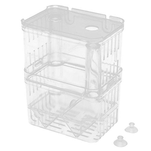 Homyl Boîte de Reproduction Aquarium Pondoir Isoloir Ecloserie en Plastique Transparent