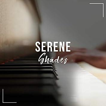 # 1 Album: Serene Shades