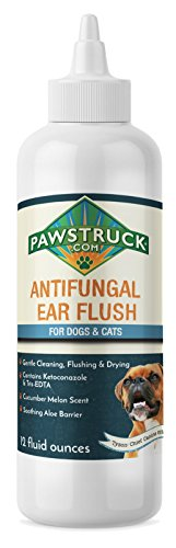 Pawstruck Anti-Fungal Ear & Skin Flush #1 Dog Ear Infection Treatment – Solves Itching, Head Shaking, Discharge & Smelly Ears Due to Mites, Yeast & Bacteria – Veterinarian Formulated
