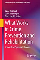 What Works in Crime Prevention and Rehabilitation: Lessons from Systematic Reviews (Springer Series on Evidence-Based Crime Policy)