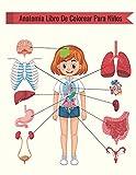 Anatomia Libro De Colorear Para Niños: Más de 30 páginas para colorear del cuerpo humano