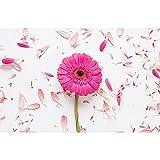 Accesorios de Fondo de fotografía de Vinilo Tema de tablón de Madera y Flor estéreo Retrato Foto de Fondo Disparar A14 10x7ft / 3x2.2m