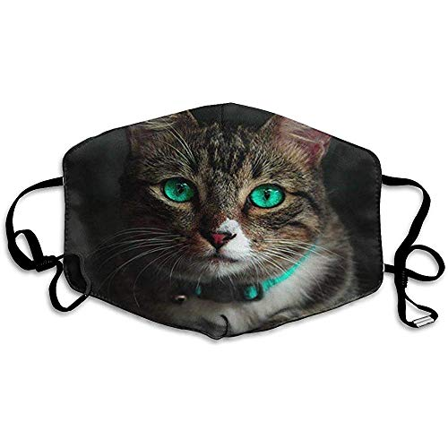 Elaine-Shop Antipolución Polvo Mascarilla Facial Boca Gato Hermoso Gato Lindo Con Ojos Verdes Sobre Un Fondo Negro C