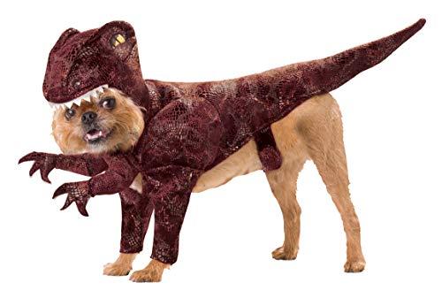Animal Planet PET20109 Raptor Dog Costume, Large