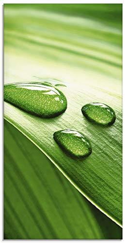 Artland Glasbilder Wandbild Glas Bild einteilig 30x60 cm Hochformat Natur Pflanzen Blätter Wassertropfen Zen S6RI