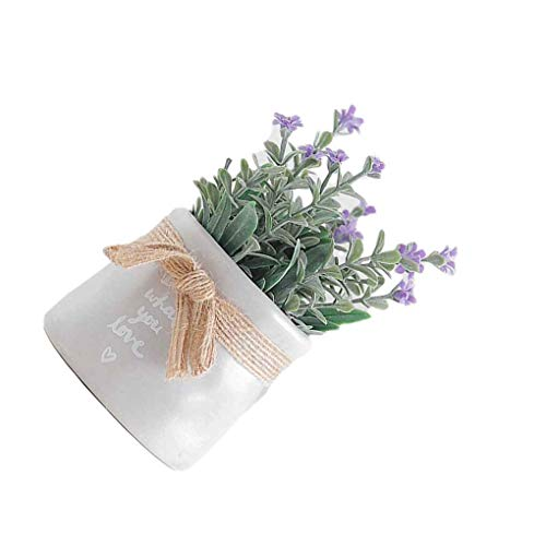 Regard Natral - Plantas artificiales pequeñas para decoración de baño u oficina, macetas falsas de simulación, Morado, 12*6*5.5cm