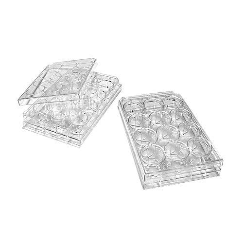 Evergreen Scientifics 333-8026-01F Polystyrol-Mikroplatte mit Deckel, behandelt, flacher Boden, steril, 12 Mulden, 50 Stück