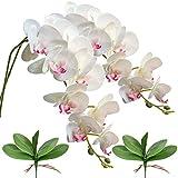 FagusHome 2 Piezas Flores Artificiales Orquídea Phalaenopsis Mariposa 105cm con 2 Piezas Hojas de Orquídea Phalaenopsis Hojas (A)