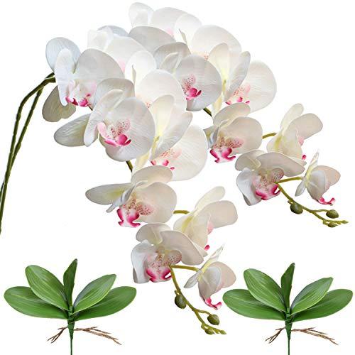 FagusHome 2 Stück künstliche Phalaenopsis Orchideen Blumen Weiß 105CM mit Künstliche Orchidee Blätter 2 Bündeln für Deko (Weiß+Rosa)