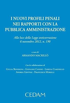 I nuovi profili penali dei rapporti con la pubblica amministrazione