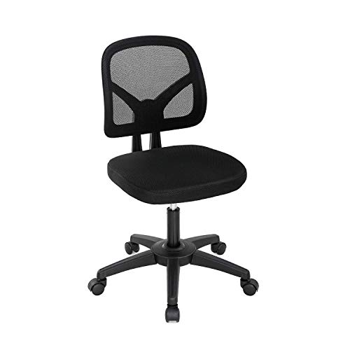 LCH Mesh Office Chair,Ergonomic Chairs,Armless Chair-Adjustable Swivel Rolling Desk Chairs with Wheels,Indoor Computer Chairs for Office, Home, Kitchen