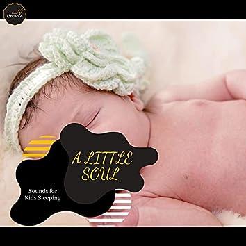 A Little Soul - Sounds For Kids Sleeping