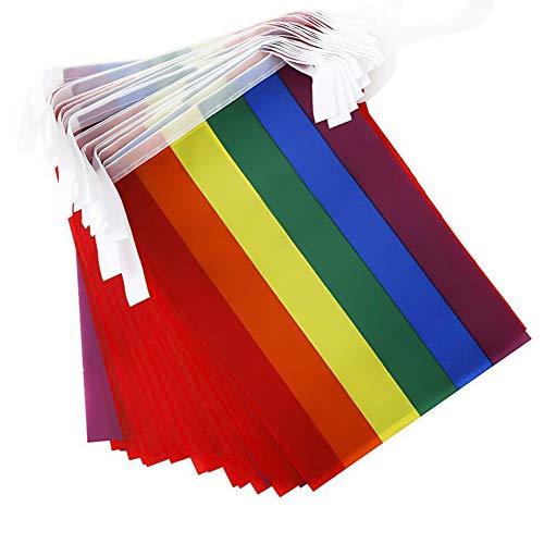 Engao - Bandera de cuerda de arco iris de 14 x 21 cm, 21 x 14 cm, una cuerda de 20, una longitud total de 5,5 metros