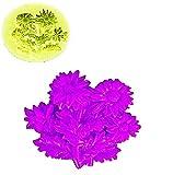 KIRALOVE Molde de Silicona con Forma de Ramo de Flores de Margarita - Velas - Resina - Yeso - Bricolaje - hágalo Usted Mismo - Pasatiempos - moldes - Molde para Uso Artesanal