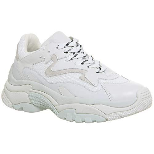 ASH Addict Damen Sneaker Weiß
