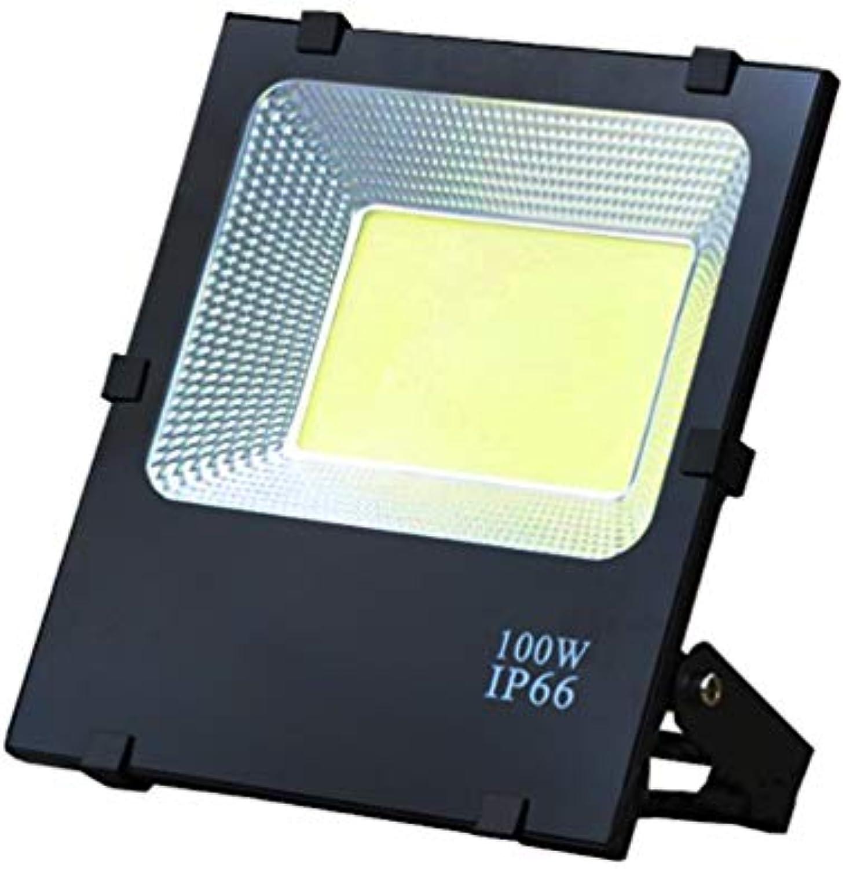 XEX LED Strahler Mit, 100W Wasserdichtes IP65-Arbeitslicht Im Freien, Quadratisches Sicherheitslicht Im Freien (Farbe   Weiß Light)