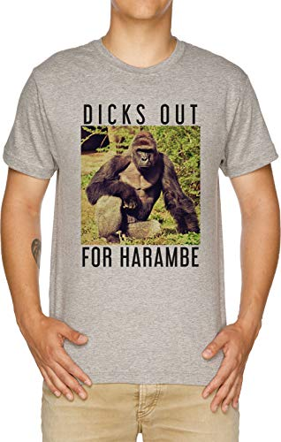 Dicks Out for Harambe Herren T-Shirt Grau