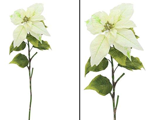 Adventsstern cremefarben, Länge 72cm - Kunsblumen künstliche Blumen Kunstpflanzen künstliche Pflanzen Blumen