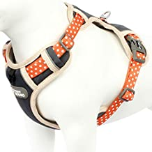 Rhea Rose Cute Dog Harness Pet Soft Adjustable Vest Best Reflective Walking Harness Easy Control for Small Medium Large Dogs Orange S